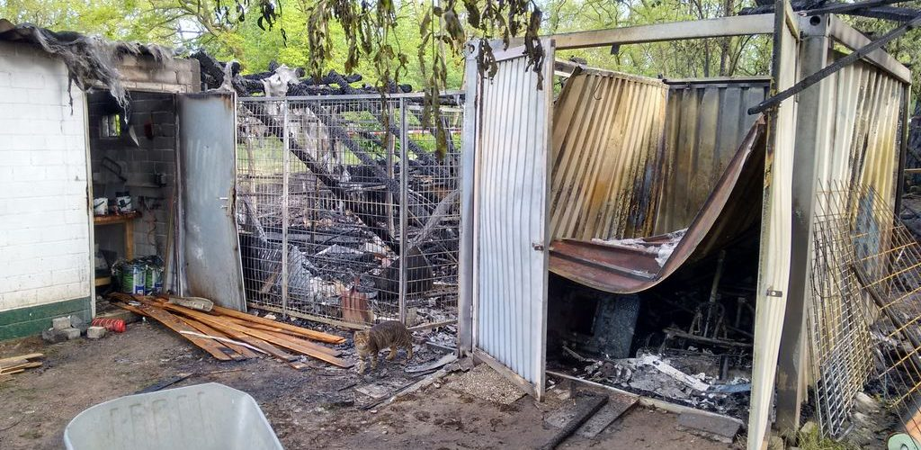 Brand auf dem Hundeplatz